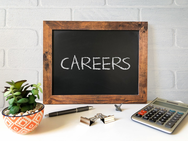 5 Great Career Opportunities in This Digital Age